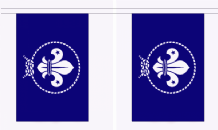 Scout Movement Blue Flag 3m Bunting